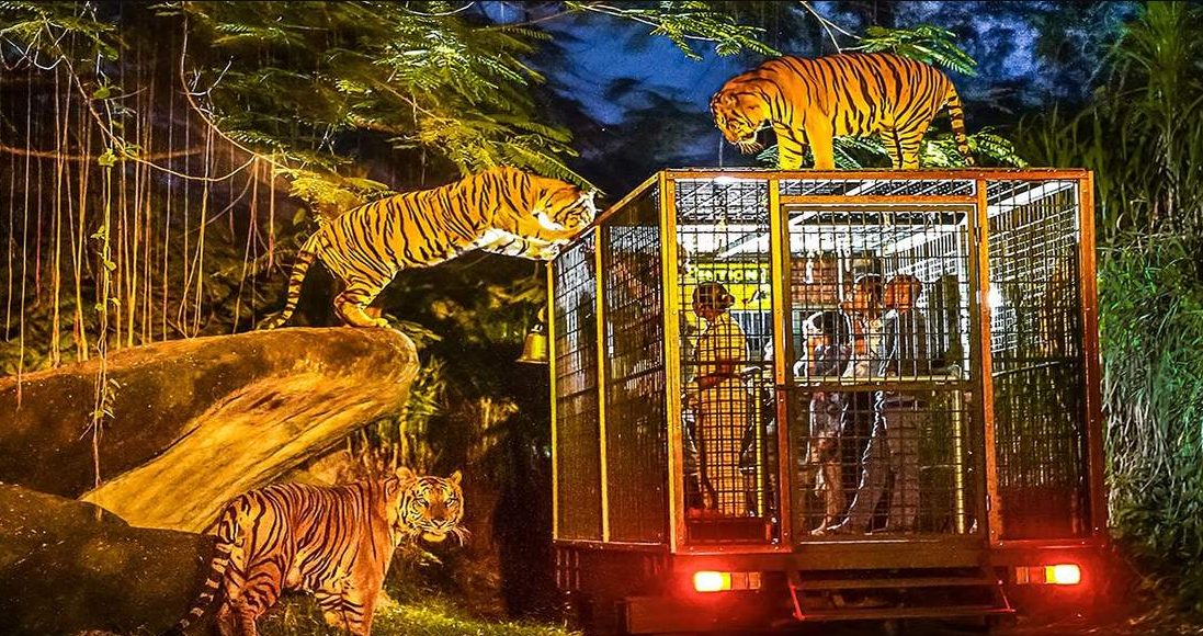 Bali Safari Park- Night show