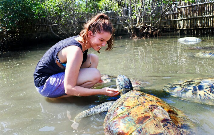 Turtle island grils