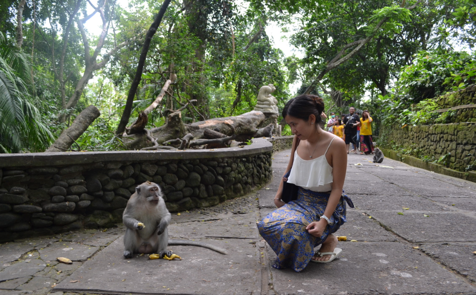 monkey forest ubud gril
