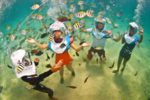 Enjoying the underwater beauty with Aquanauts