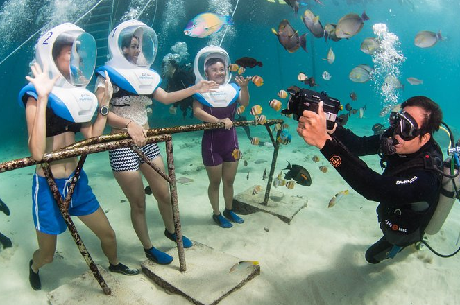 underwater beauty with Aquanauts family
