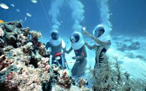 Water Marine Walk Bali tour in Nusa Lembongan