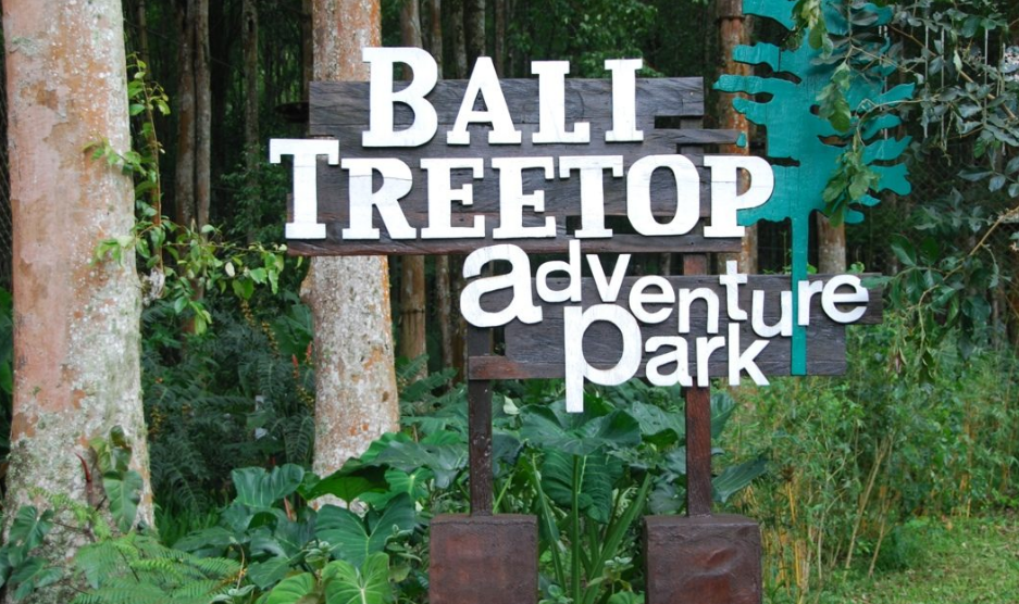 Bali treetop adventure park gate