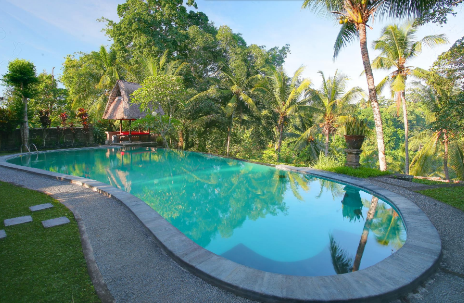 hotel bucu view Ubud Bali swimming pool 2