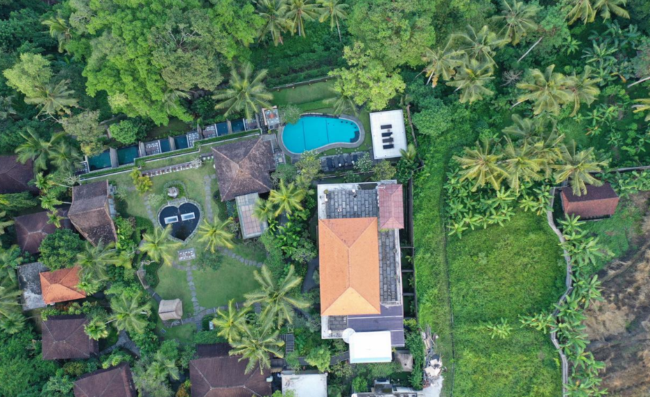 hotel bucu view Ubud Bali view