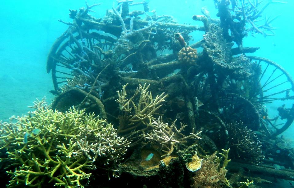 underwater temple of Pemuteran Bali