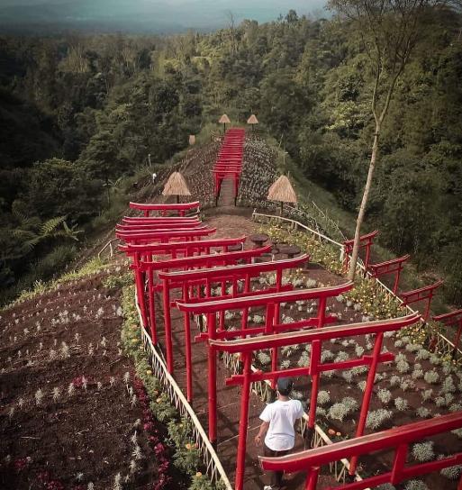 Jinja Karangasem Park Bali torii