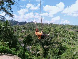 21+ Bali Swing Ubud Harga Gif